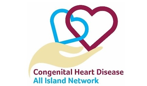 All-Island Congenital Heart Disease Network Conference takes place in Titanic Belfast